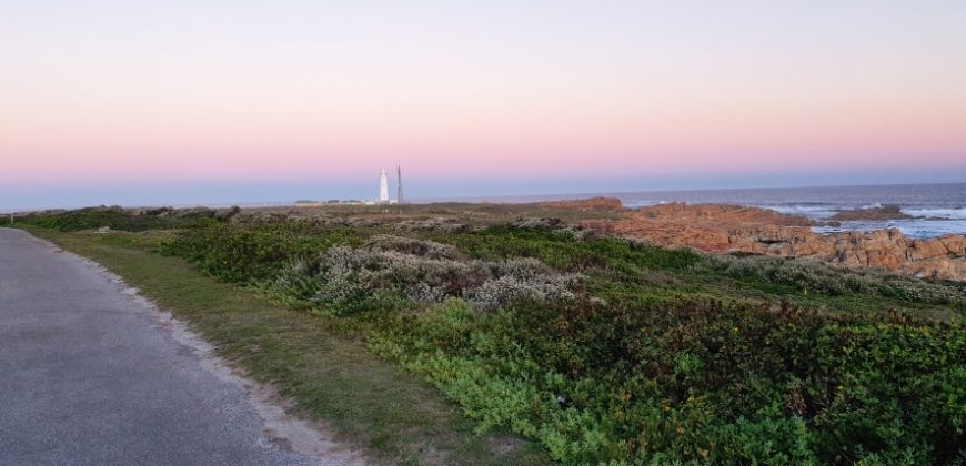 Cape St Francis – Birds, Bush and Ocean